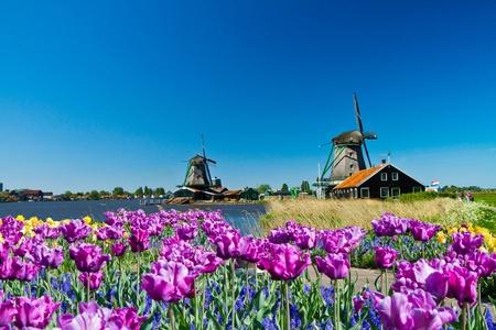 Foto des Windmühle in Holland mit blauer Himmel  Standard-Bild