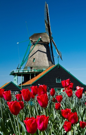 Photo of windmill in Holland with blue sky  photo