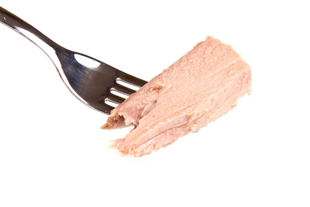 tuna fish on fork Stock Photo - 9776910