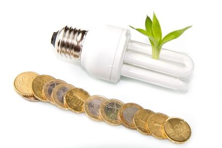 Energy saving fluorescent light bulb  photo