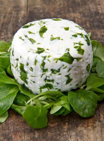 queso de cabra: queso de cabra con rucola fresca