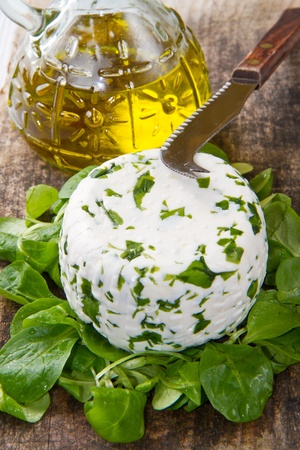 rennet: goat cheese with fresh rucola Stock Photo