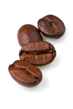 granos de cafe: disparo de macro de granos de caf� aislados sobre fondo blanco