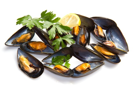 mussel: pile of cooked mussels  over white background