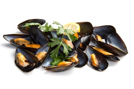 mussels: pile of cooked mussels  over white background