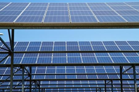 sonnenenergie: Solarenergie-Pflanzen  Lizenzfreie Bilder