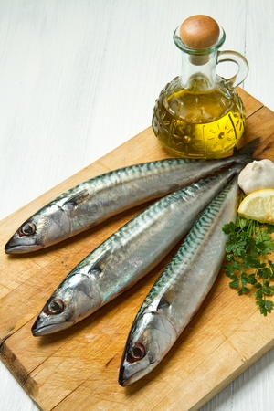 mackerel fish Stock Photo - 10704454
