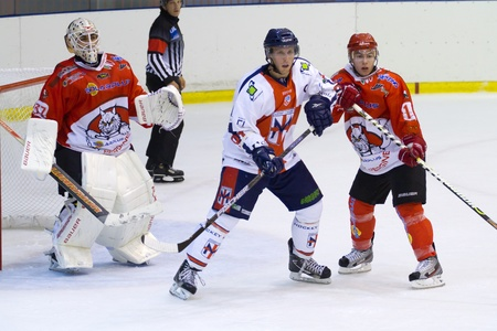diving save: ice hockey