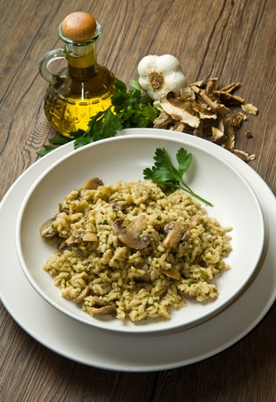 rice with porcini mushrooms photo