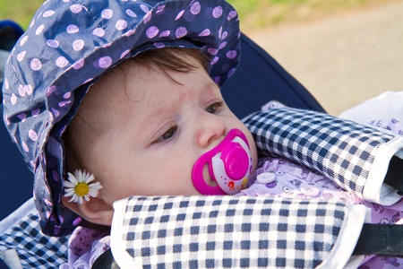 baby with daisy Stock Photo - 12841659
