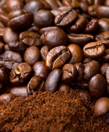 beverage in bean: Coffee  Stock Photo