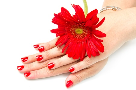 cosmetic lacquer: Woman hands with red manicure and red flower
