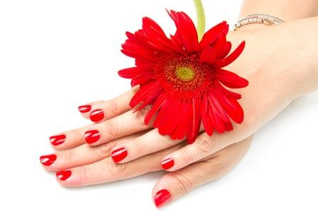 Mani di donna con rosso manicure e fiore rosso