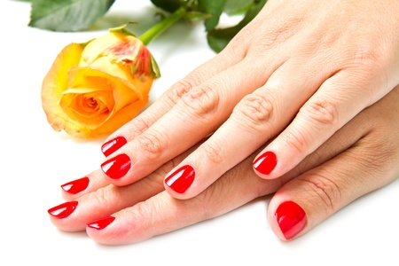cosmetic lacquer: Woman hands with red manicure and rose Stock Photo