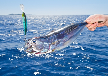 Blue fin tuna Mediterranean big game fishing photo