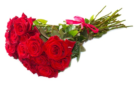 Red roses isolated on white background  photo