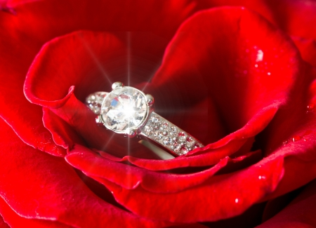 Golden diamond ring and rose Stock Photo - 16790558