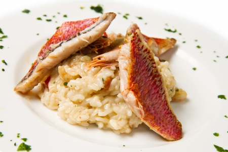 white dish with rice and red mullet fillet Stock Photo - 17331464