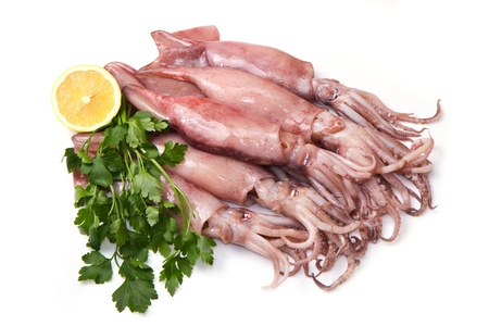 a group of fresh squid with lemon and parsley isolated on white photo