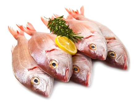 a group of sea bream with lemon and rosemary on white Stock Photo - 17842730