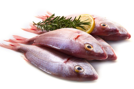 a group of sea bream with lemon and rosemary on white Stock Photo - 17842830