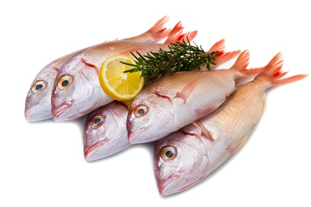 a group of sea bream with lemon and rosemary on white Stock Photo - 17842731