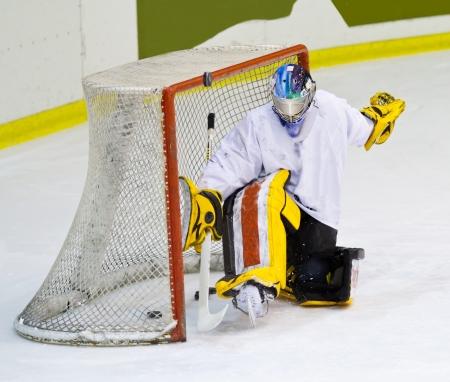 ice hockey: hockey player  Stock Photo