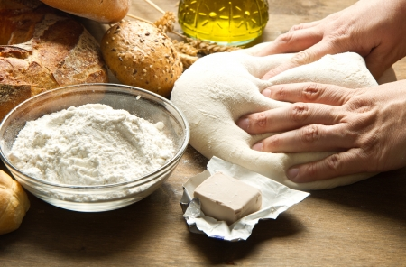 female hands in flour closeup kneading dough on table  photo