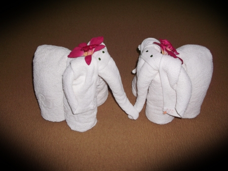 towels luxury: white elephant towel decoration in Thai style hotel room