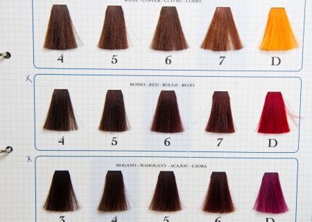 hair part: Locks of hair dyed in various shade