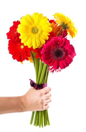 カラフルなガーベラの花の花束 写真素材 - 25789374