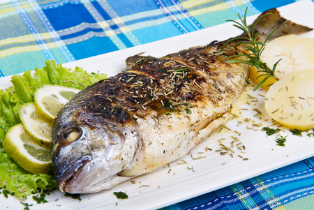 gilt head: Grilled gilt head sea bream on plate with lemon and rosemary and potatoes