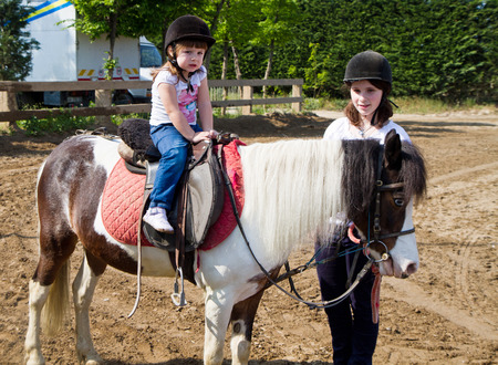 pony ride: little girl is riding a horse  Stock Photo