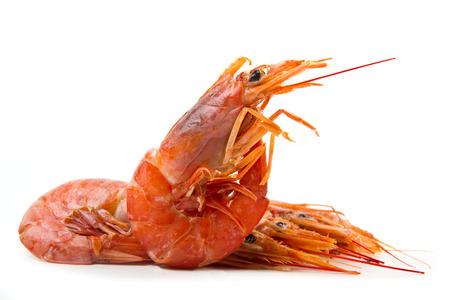 Fresh shrimps  isolated on white photo