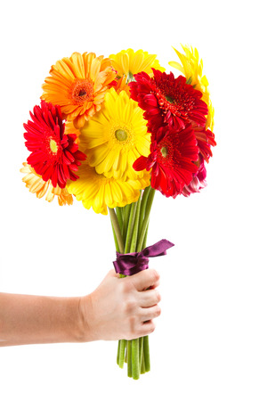 colorful gerbera flowers bouquet photo