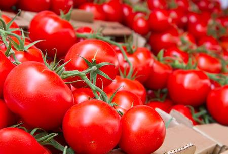 group of fresh tomatoes photo