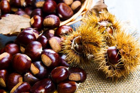 marron: chestnuts