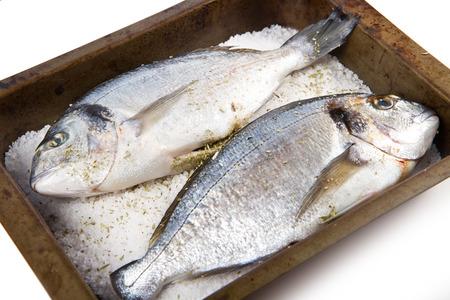 sea bream: Gilt head sea bream baked in sea salt