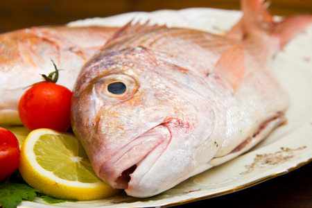 sparus: Raw porgy on white dish on wood background Stock Photo