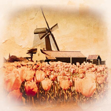 zaandam: Photo of windmill in Holland with blue sky