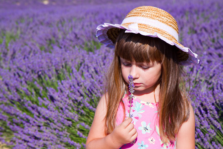 sniffing: Smiling girl sniffing flowers in a lavender field