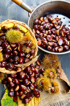 edible: nice edible chestnuts