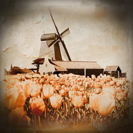 molino de agua: Foto de molino en Holanda con cielo azul
