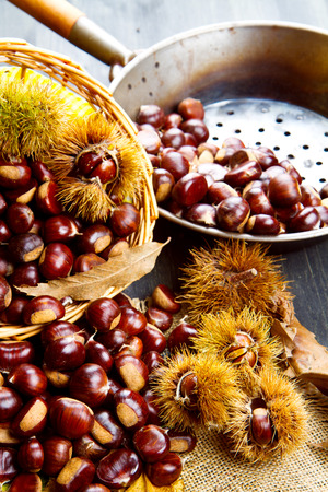 trees seasonal: nice edible chestnuts
