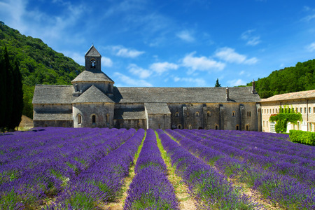 luberon: Abbey of Senanque and blooming rows lavender flowers. Gordes, Luberon, Vaucluse, Provence, France, Europe. Stock Photo