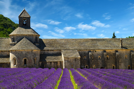 abbaye: Abbey of Senanque and blooming rows lavender flowers. Gordes, Luberon, Vaucluse, Provence, France, Europe. Stock Photo