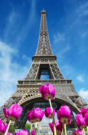 tour eiffel: tour eiffel in Paris