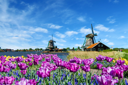 wind mills: Photo of windmill in Holland with blue sky