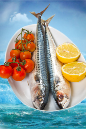 mackerel: fresh meckerel on white dish with lemon and little tomatoes
