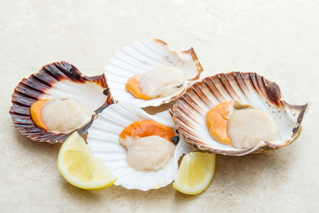 group of fresh scallops
